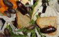 Blaptica dubia s chlebem suchou směsí a listy pampelišky