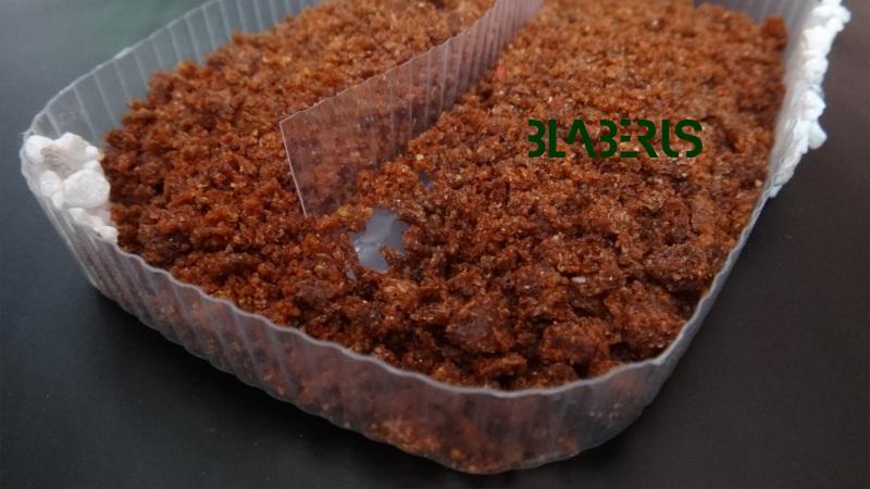 Krmítko pro šváby s granulemi žebříčkem a přepážkou pro šváby na zádech